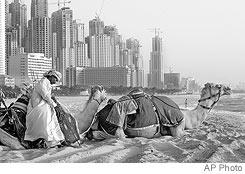 DubaiCamel.jpg