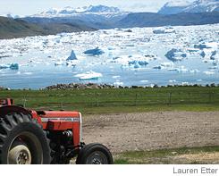 GreenlandPotatoFarm.jpg