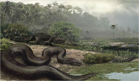 SnakeLargest2009-02-16.jpg