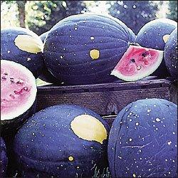 WatermelonMoonAndStar.jpg